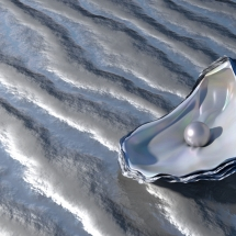 Oyster with Pearl An oyster containing a pearl on the shore waiting to be found. 3d Render.